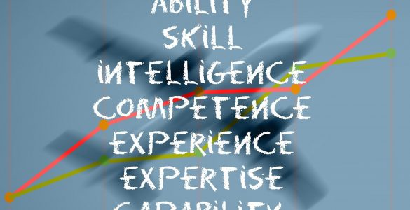 Ability Skill Intelligence Experience Expertise Capability
