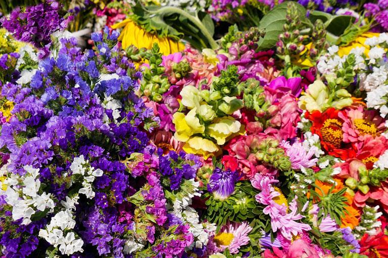 buntes arrangement von gartenblumen, foto: gerhard gellinger auf pixabay